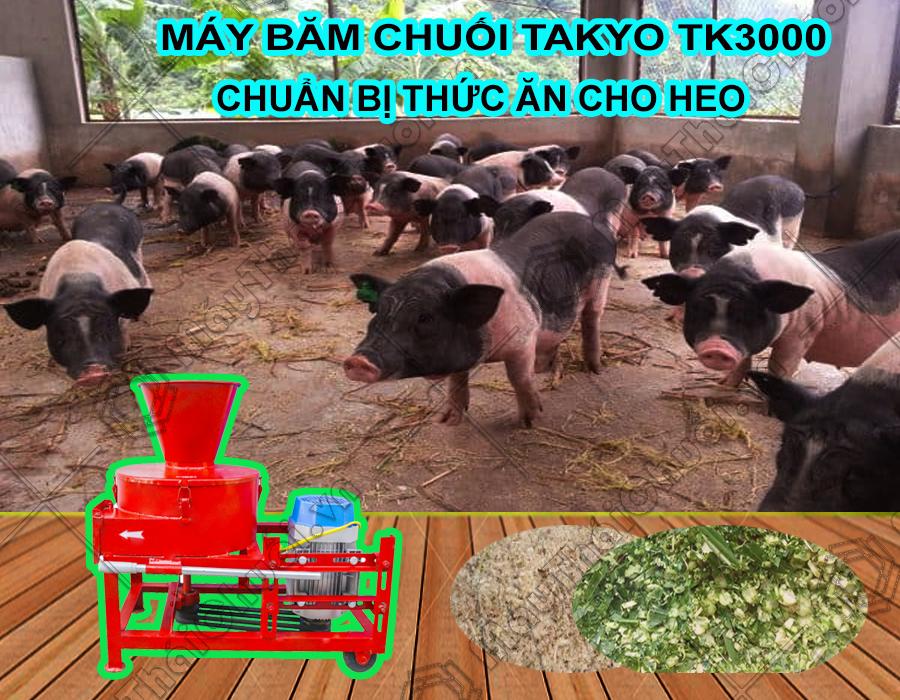 >Phân phối máy băm chuối đa năng Takyo TK3000 cho heo giá rẻ tại Sài Gòn