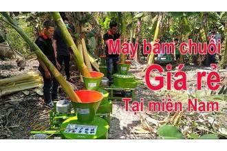Máy thái cây chuối đa năng giá rẻ, chất lượng tại Miền Nam
