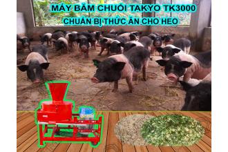 Phân phối máy băm chuối đa năng Takyo TK3000 cho heo giá rẻ tại Sài Gòn